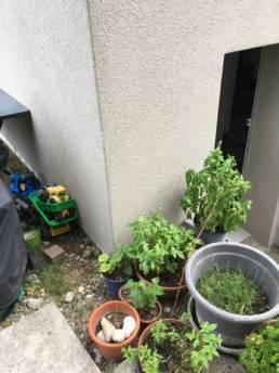 Garten - Zustand vorher